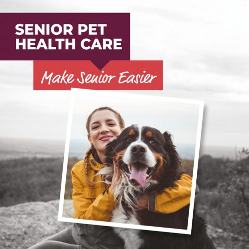 Animalcare launches campaign to 'Make Senior Easier'